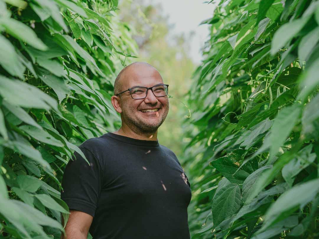 Junipero Digital Media - Τα Μυστικά του Κήπο